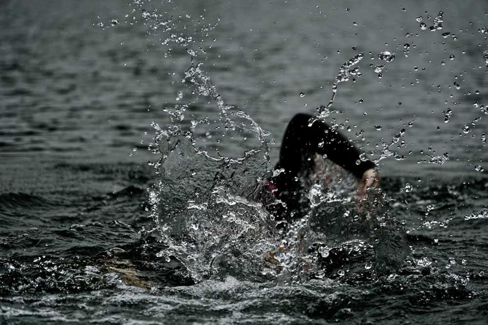 Traversée des canards et des dauphins